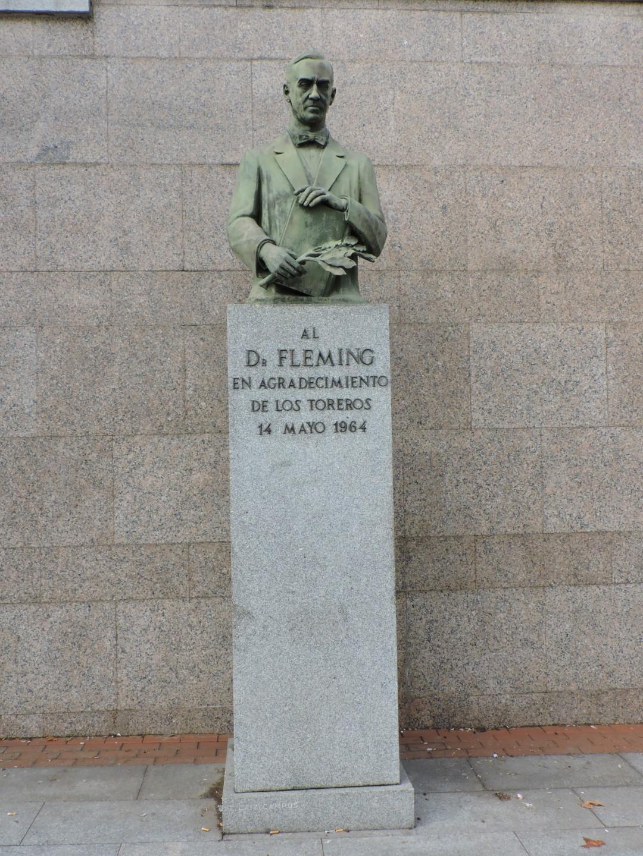 El doctor fleming sobre pedestal de granito gu a del for Informacion sobre el granito
